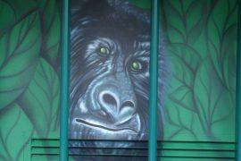 Affe 'Fassadenbild'