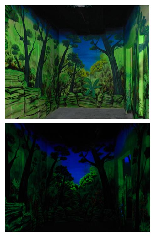 Wandmalerei Urwald Mit UV Farben