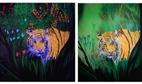 Urwald bei Tag und Nacht, mit UV-Licht und ohne