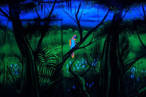 Wandmalerei Urwald Papagei im Schwarzlicht